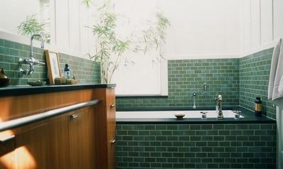 [PHOTOS] Plantes et fleurs dans la salle de bains
